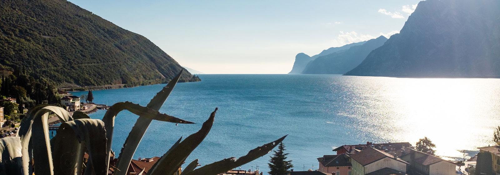 Villa Fiore Torbole Charming Apartments